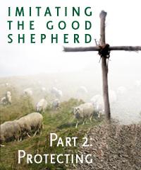 SP - Imitating the Good Shepherd part 2 - Protecting
